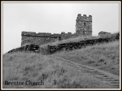 Louise Williams, Brentor